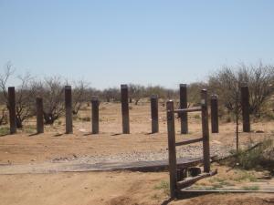 arizona 199